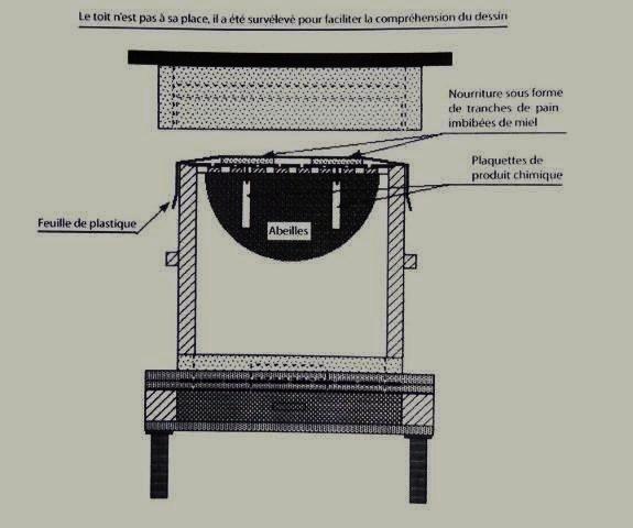 Ruche écologique et barrettes: Lutte VARROAS Dsc01117