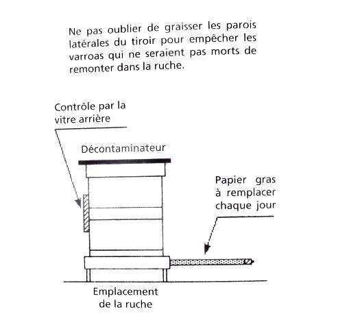 Ruche écologique et barrettes: Lutte VARROAS Dsc01118
