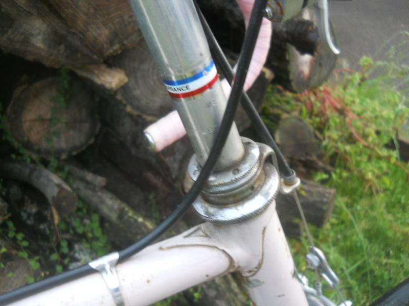 MERCIER rose 531 1977 Dscn8244