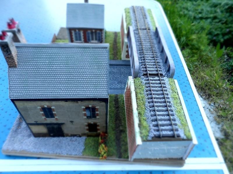 Mon premier diorama. - Page 4 Sam_1321