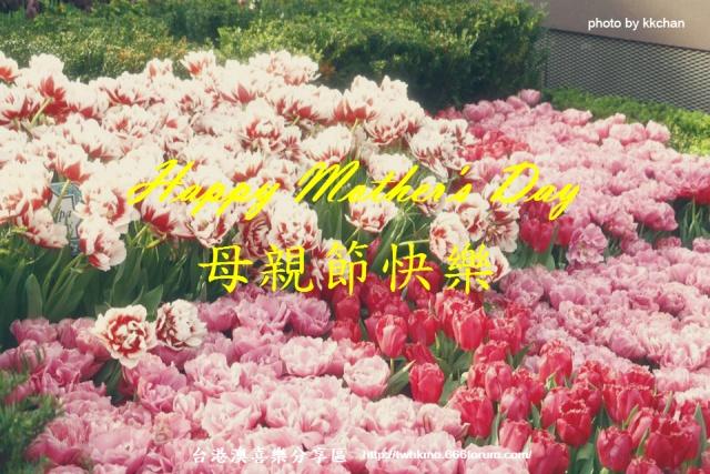 【節日慶典】♡ 2016母親節 ♡ 13043210