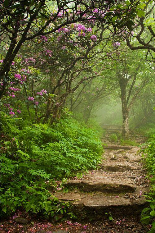 Estëmen - Way of Tranquility Stone_10