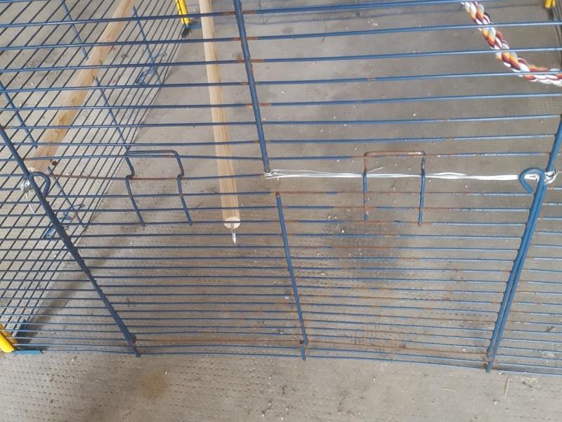 [donne] cage ferplast furet XL 20160522