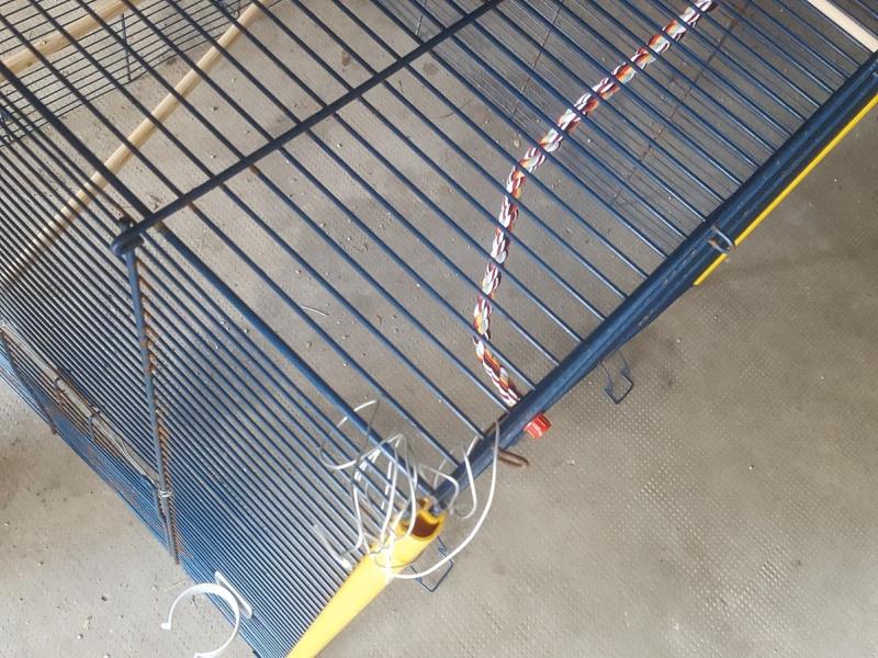 [donne] cage ferplast furet XL 20160525
