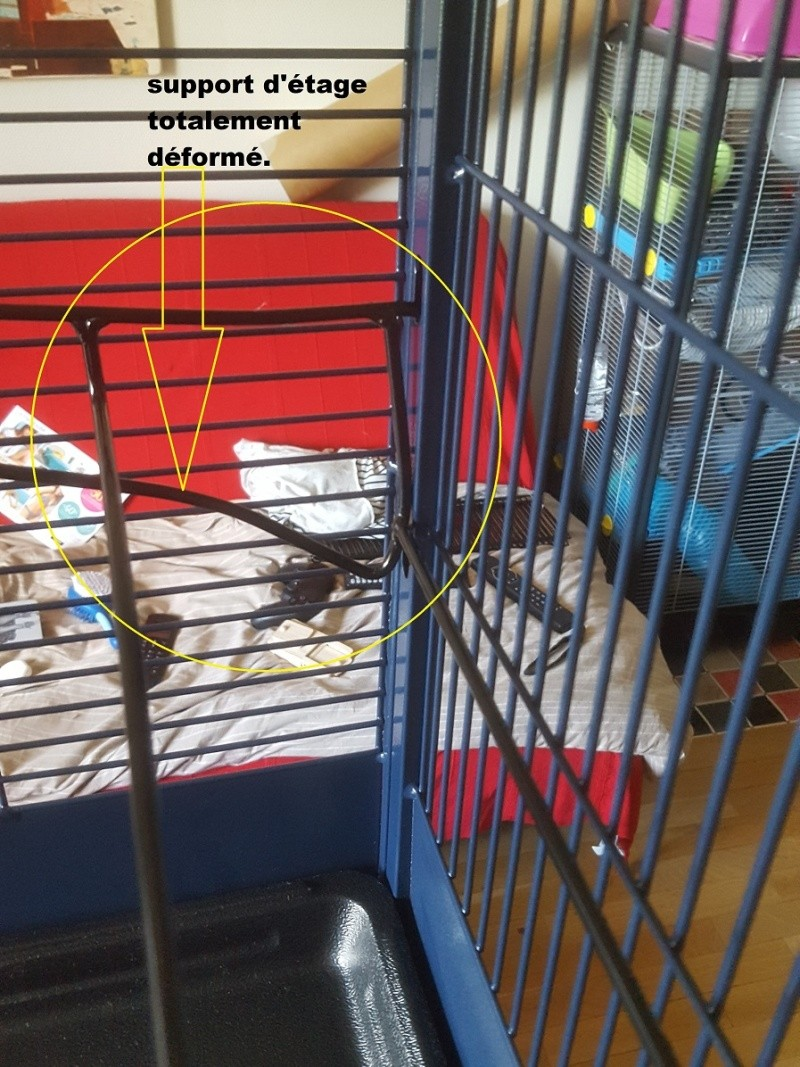 Photos de vos cages - Page 6 Savic_13
