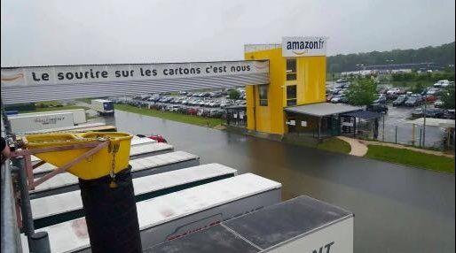 coucou du jour  Amazon10