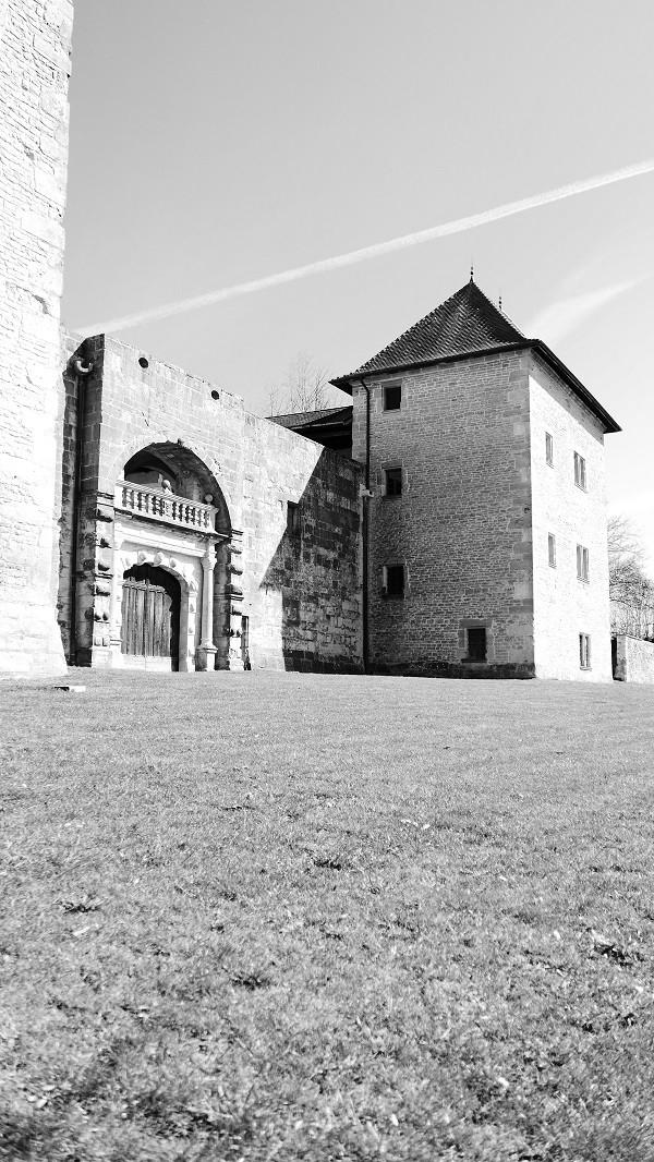 Vie de château.. P1040310