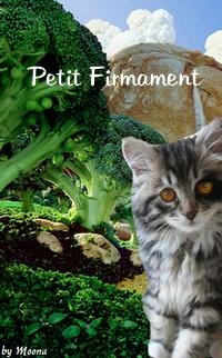 Présentation de Etoile Blanche Petit_11