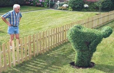 Nos chers voisins (humour)  Humour13