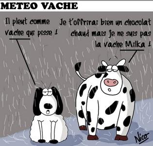 Météo en france  - Page 2 Mytyo310