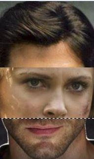 Les visages du monstre de  Frankenstein  Portra11