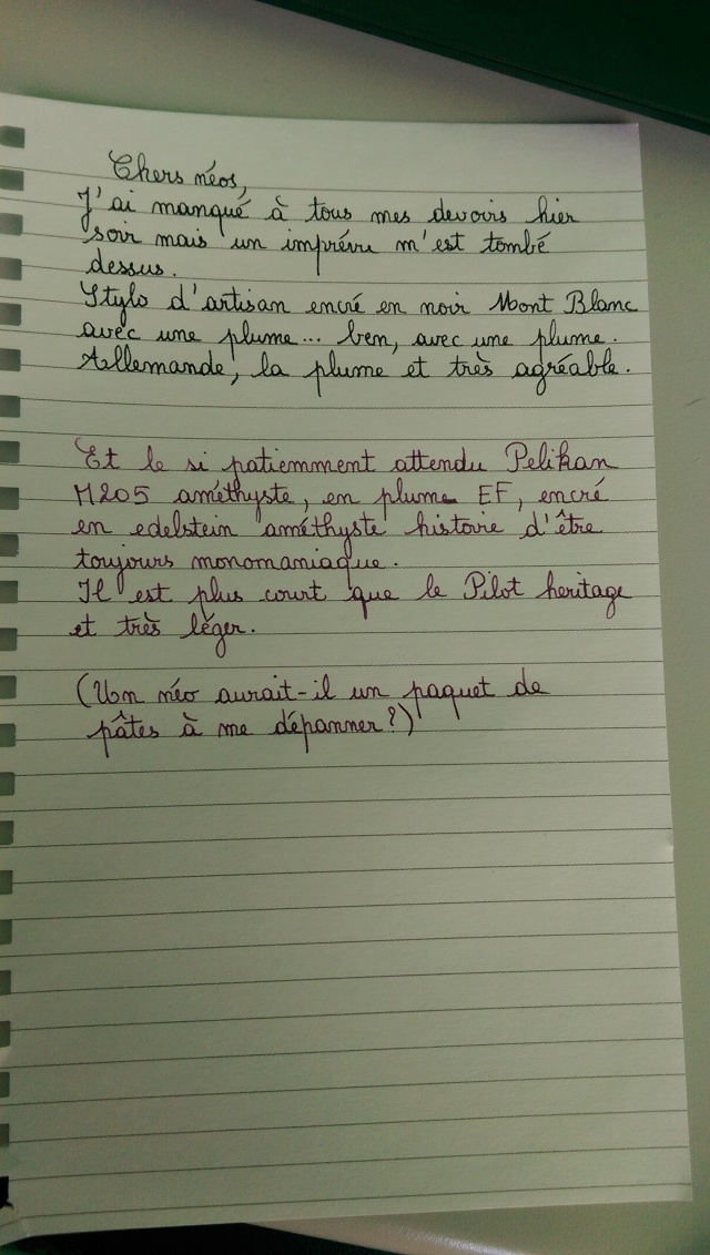 Stylos plume - Page 11 Imag1511