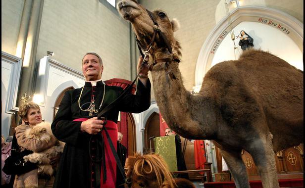 Le Messe des Animaux à l'Eglise Messe_10