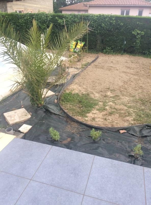 Bordure de jardin pour gravier  Img_2611