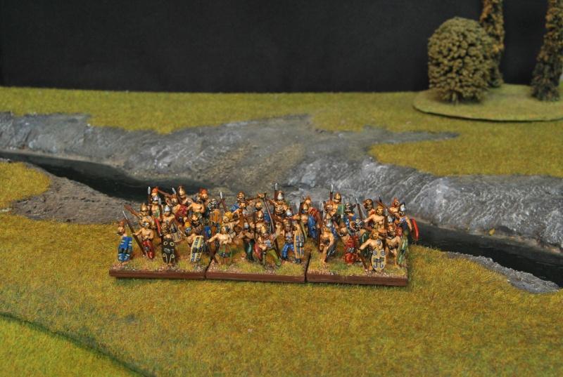 Mes armées chap. 4: Celtes Dsc_5012