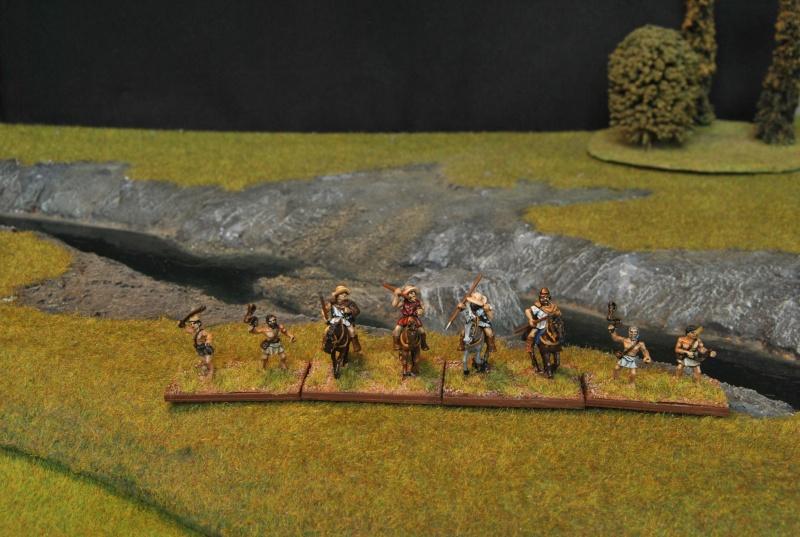 Mes armées chap. 4: Celtes Dsc_5013