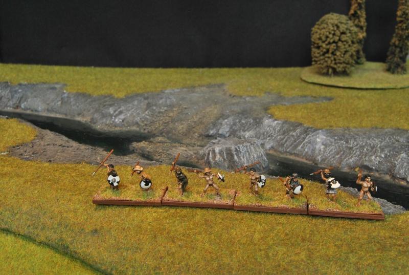 Mes armées chap. 4: Celtes Dsc_5014