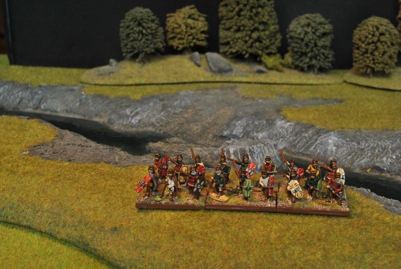 Mes armées chap. 4: Celtes Dsc_5016