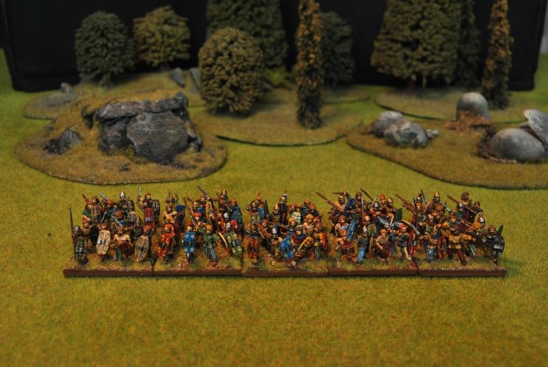 Mes armées chap. 4: Celtes Dsc_5110