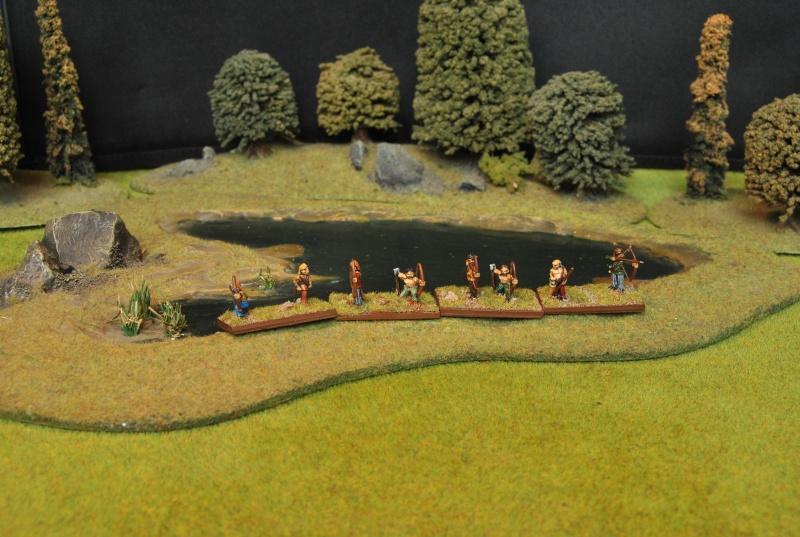 Mes armées chap. 4: Celtes Dsc_5114