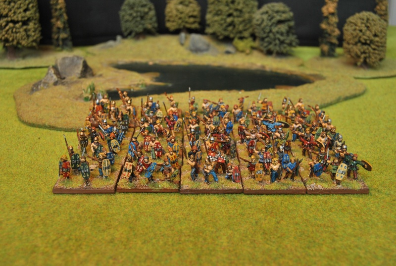 Mes armées chap. 4: Celtes Dsc_5115