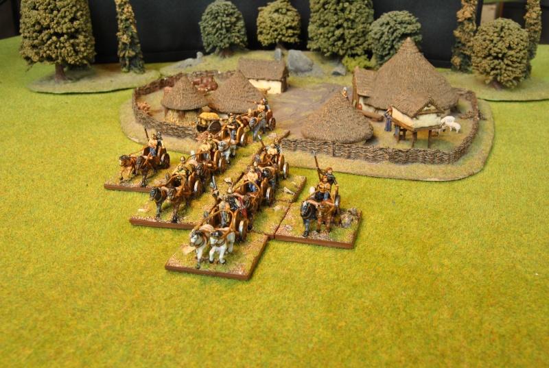 Mes armées chap. 4: Celtes Dsc_5117