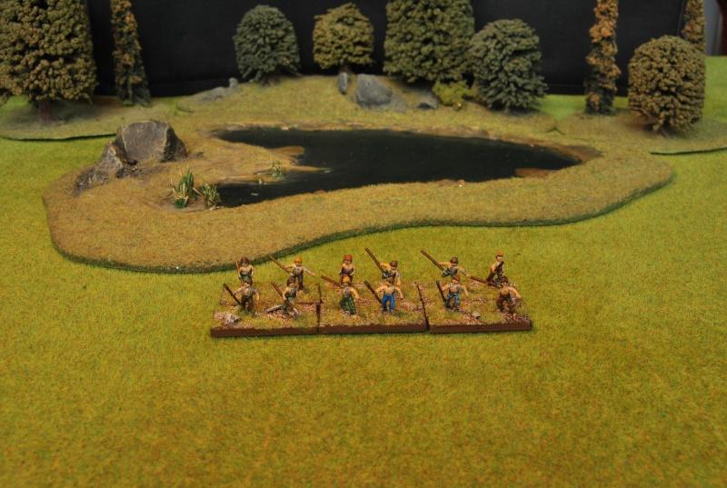 Mes armées chap. 4: Celtes Dsc_5118