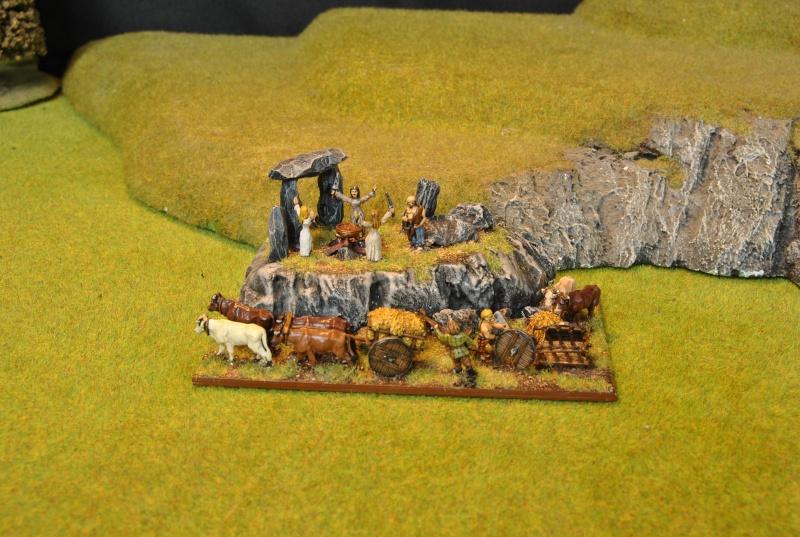 Mes armées chap. 4: Celtes Dsc_5119