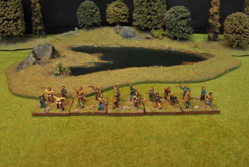 Mes armées chap. 4: Celtes Dsc_5120