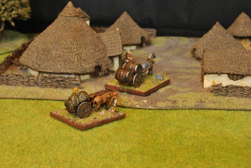 Mes armées chap. 4: Celtes Dsc_5121