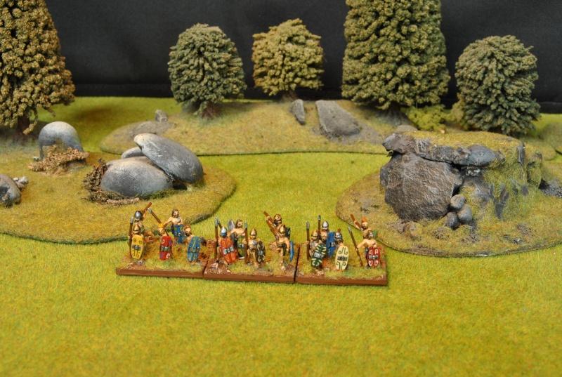 Mes armées chap. 4: Celtes Dsc_5122