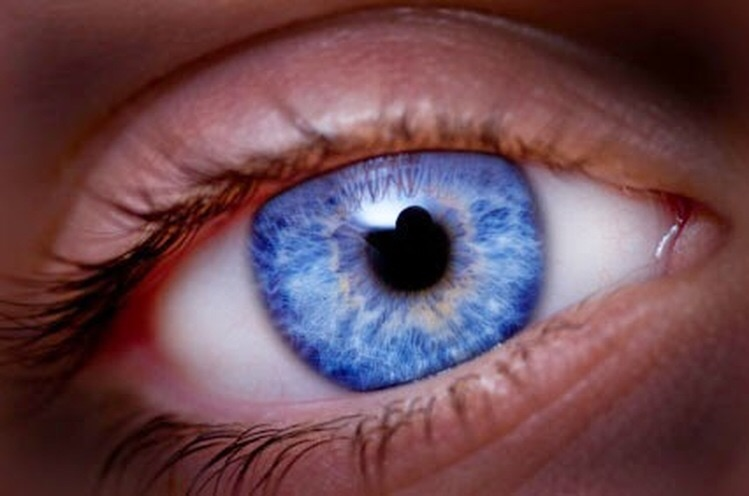 3/9/2016 The Origin of the Blue Eyes: The Ancient 'Gods' and Their Royal Descendants Image102