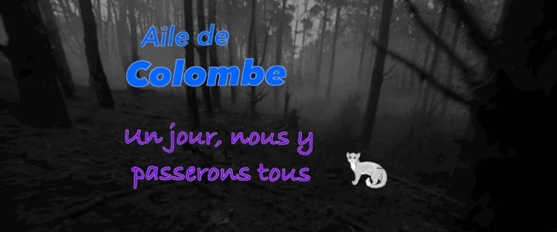 Libre-Service de Ardou Image40