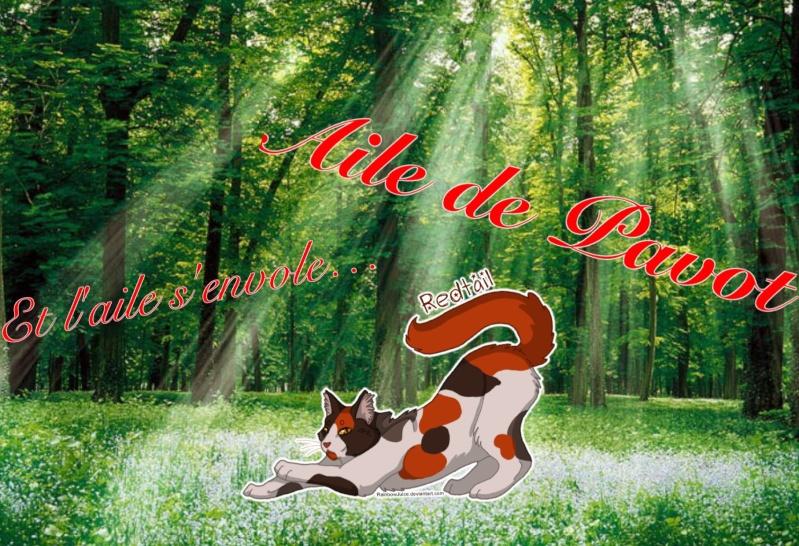 Libre-Service de Ardou Image43