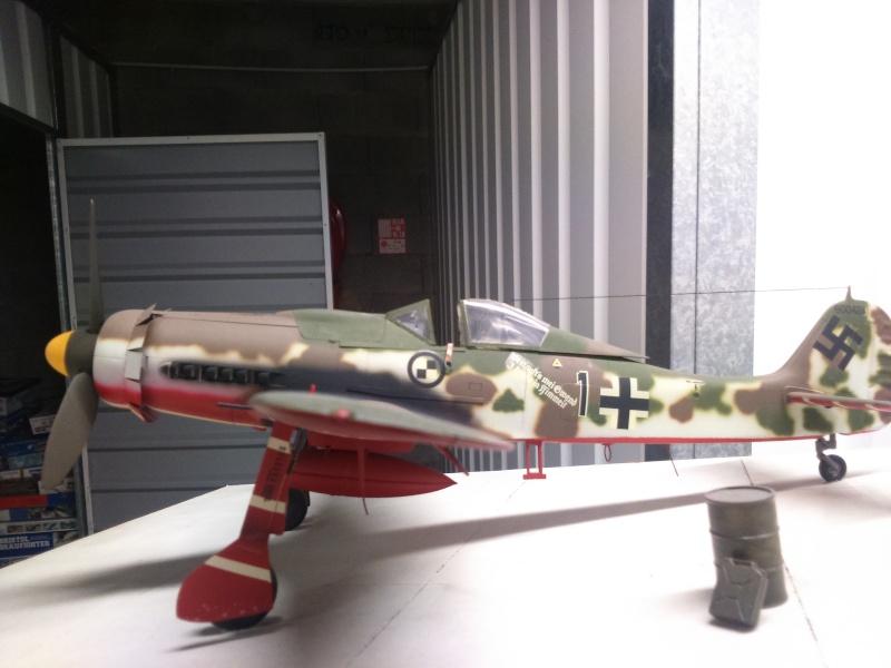 190 D9 hasegawa atterissage apres 15 ans de vol Dsc_0028