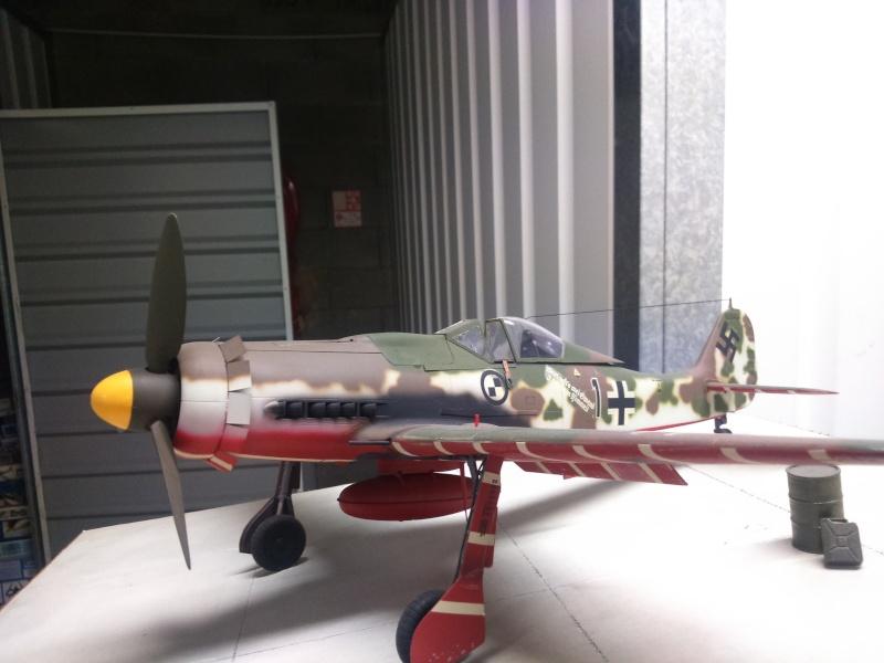 190 D9 hasegawa atterissage apres 15 ans de vol Dsc_0029