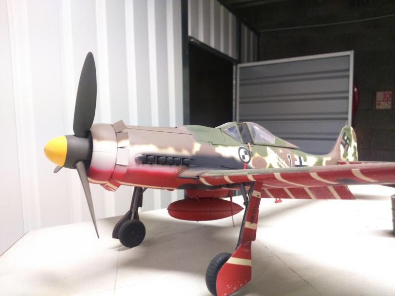 190 D9 hasegawa atterissage apres 15 ans de vol Dsc_0031