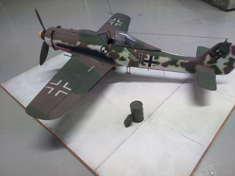 190 D9 hasegawa atterissage apres 15 ans de vol Dsc_0032