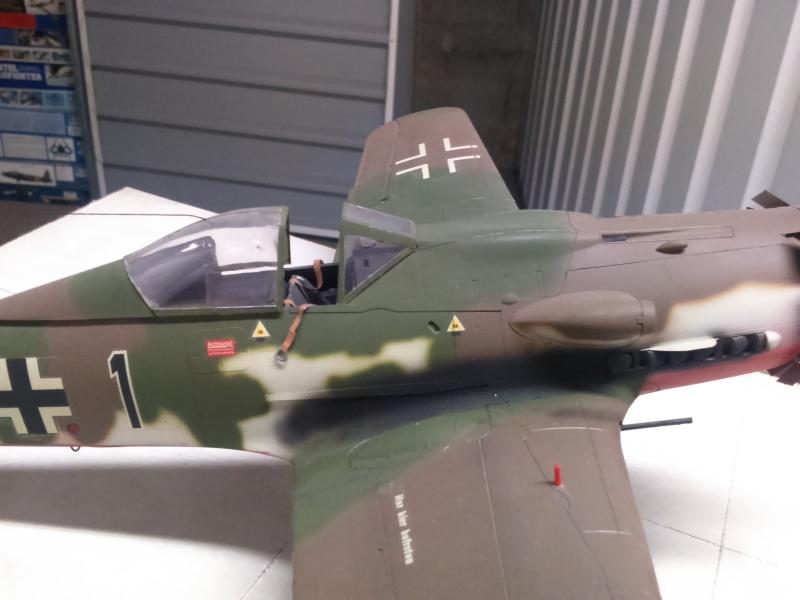 190 D9 hasegawa atterissage apres 15 ans de vol Dsc_0038