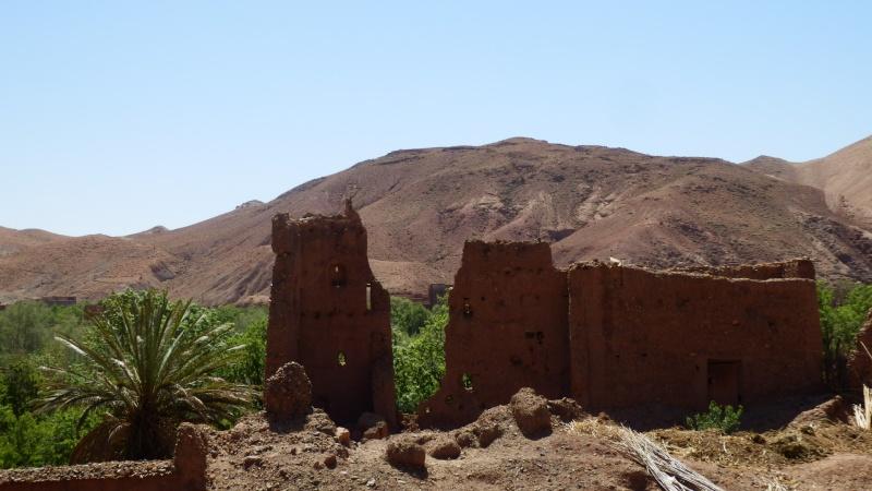 [Maroc Camp/Dernières nouvelles] le Gite Amoudou à Toundoute P4020010