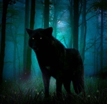 ... And Then the Wolves Came. Image10