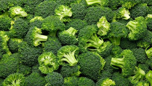 Herbal Medicine Brocco10