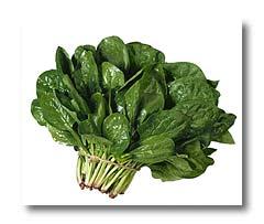 Herbal Medicine Spinac10