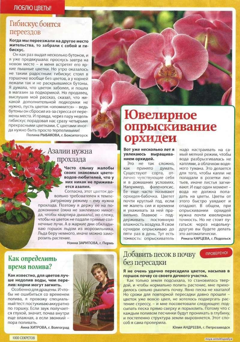 статьи о растениях из  газет и журналов 0_17f510
