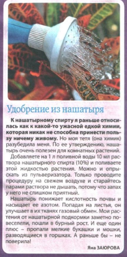 статьи о растениях из  газет и журналов - Страница 2 1000_i12