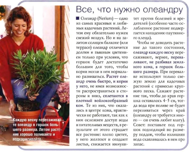 статьи о растениях из  газет и журналов - Страница 2 5710