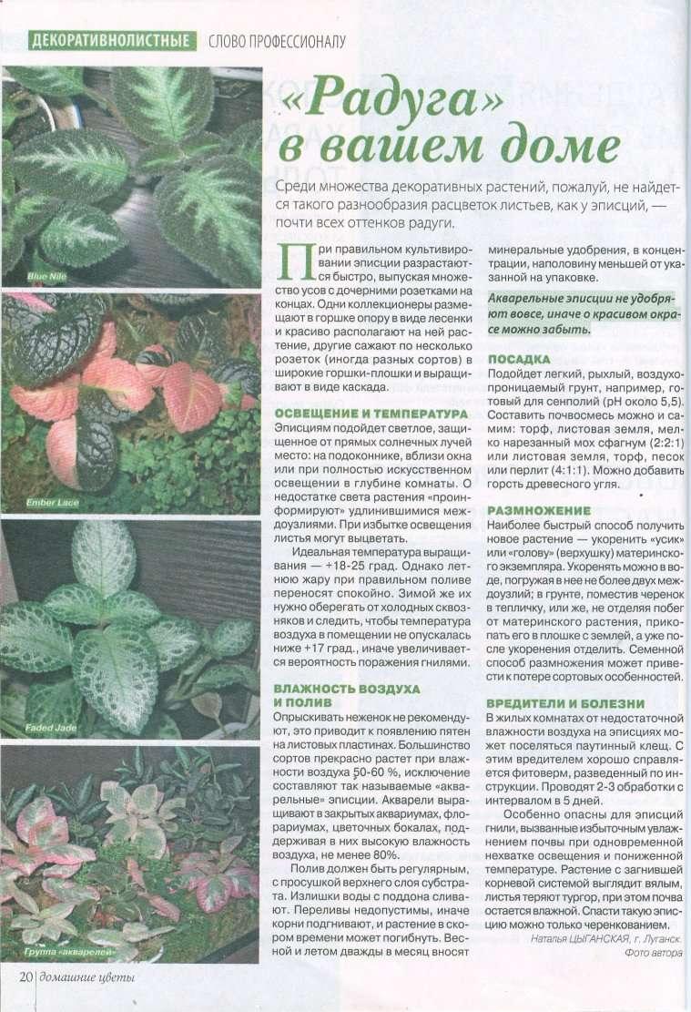 статьи о растениях из  газет и журналов - Страница 2 Bf633d10