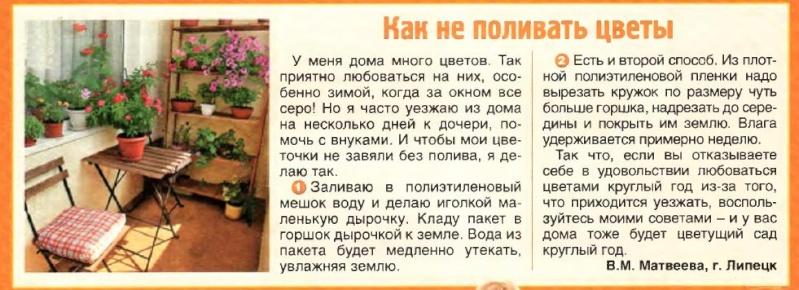 статьи о растениях из  газет и журналов Eziaaz10
