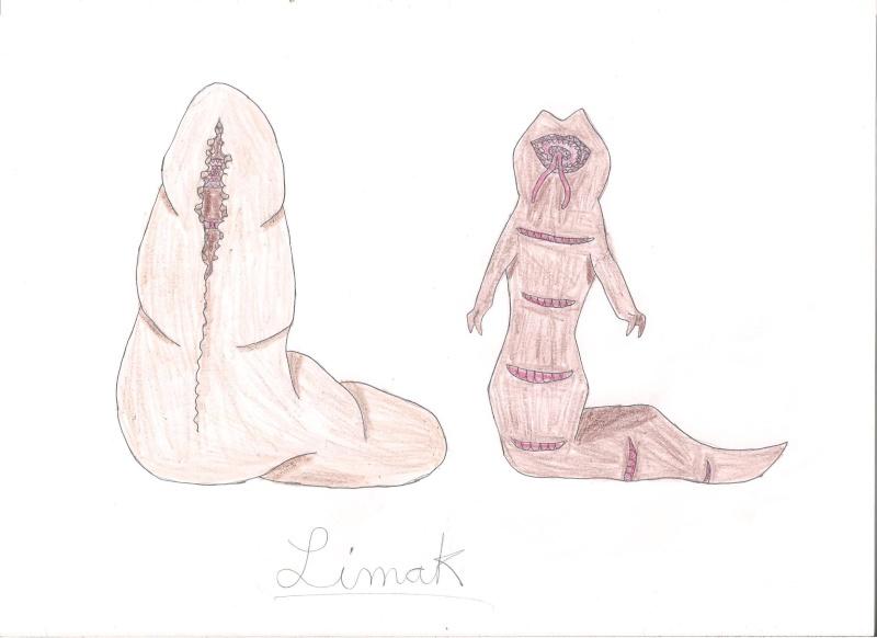 Vos dessins hors sujet - Page 7 Limak10