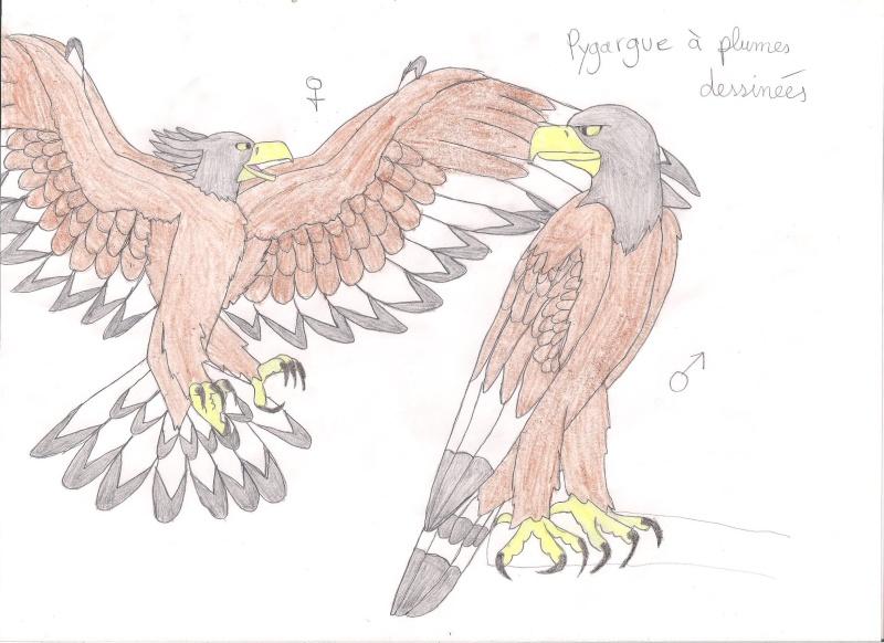 Vos dessins hors sujet - Page 7 Pygarg10